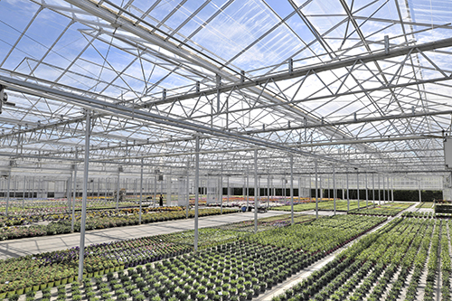 Solutions horticoles
